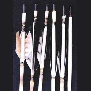 Examples of arrow fletching